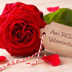 Rosenverkauf der SV für den Valentinstag